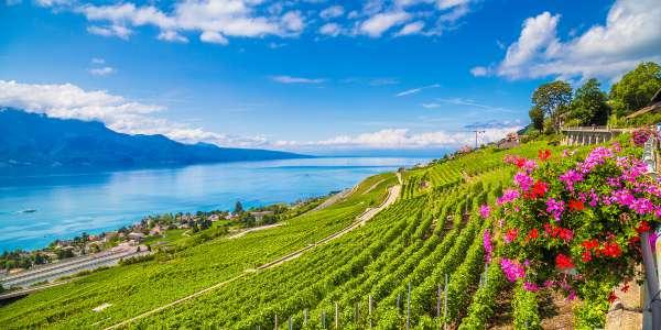 Switzerland Vacations