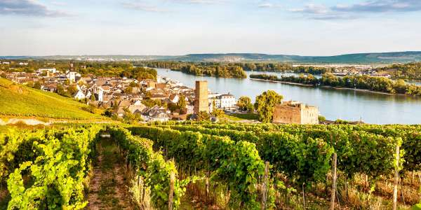 Europe | 7-Day Enchanting Rhine River Cruise